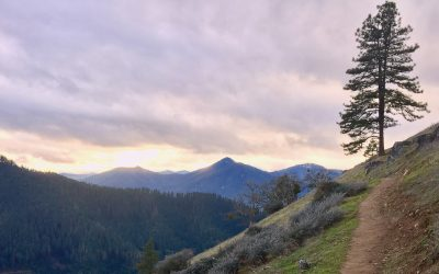 2020 Wildfire Season Resources